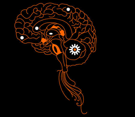 complex system: Orange brain  on black background
