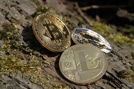 bitcoin, litecoin and ripple close up on outdoor bark texture Stok Fotoğraf