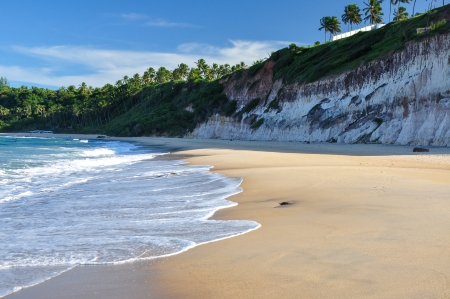 Beach of Pipa, with cliffs and palms in background, Natal  Brazil  photo