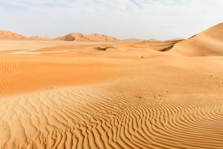 Sand dunes in Rub al-Khali desert, Dhofar region  Oman  Stock Photo