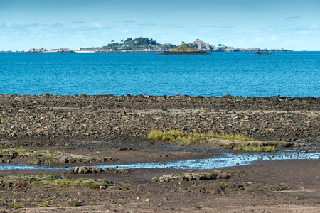bight: Bight of Beauport near Paimpol at low tide, Finistere department of Brittany (France)