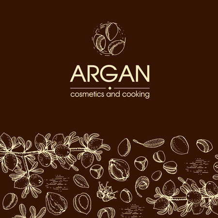 Composition with branch argan tree with fruits, nuts argans, leaves and accessories Detailed hand-drawn sketches, vector botanical illustration. For menu, label, packaging design. Stock fotó - 155618050