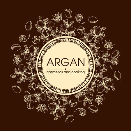 Frame with branch argan tree with fruits, nuts argans, leaves, flower argans Detailed hand-drawn sketches, vector botanical illustration. For menu, label, packaging design. Illusztráció