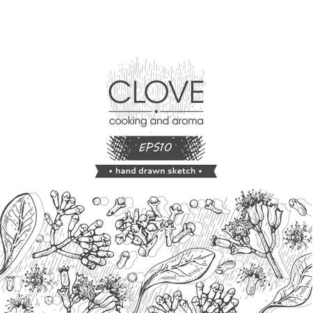 Background with branches of a carnation tree with leaves, buds and flowers. Detailed hand-drawn sketches, vector botanical illustration.