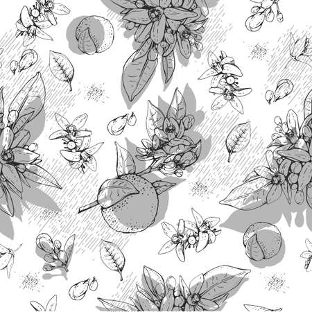 Seamless Pattern with bitter orange flowers, buds, fruits. Detailed hand-drawn sketches, vector botanical illustration. For menu, label, packaging design.