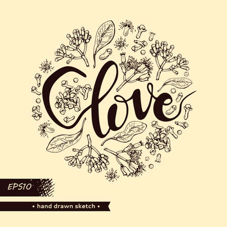 Circle filled branches of a carnation tree with leaves, buds and flowers and lettering Clove. Detailed hand-drawn sketches, vector botanical illustration. For menu, label, packaging design