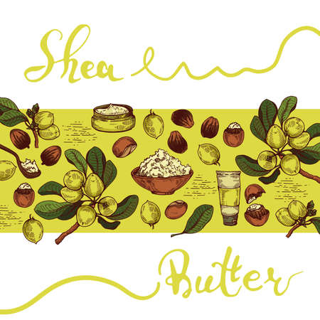 Background with branch Shea tree with fruits, nuts, leaves and Shea butter and wooden plate with shea butter, spoon filled with shea butter, cream in jar, cream in tube. Detailed hand-drawn sketches and lettering, vector botanical illustration. For cosmetics, medicine, aromatherapy. For menu, label, packaging design. 矢量图像