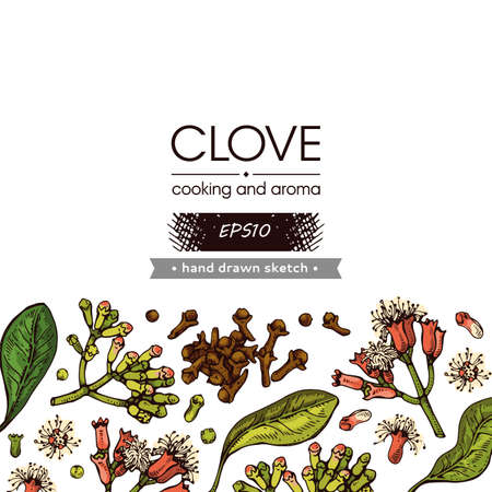 Background with branches of a carnation tree with leaves, buds and flowers. Detailed hand-drawn sketches, vector botanical illustration. For menu, label, packaging design.