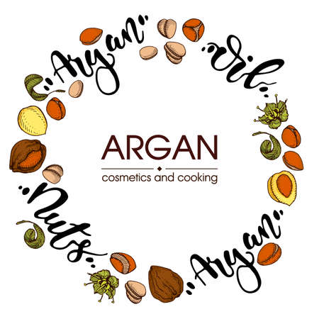 Background with branch argan tree with fruits, nuts argans, leaves, flower argans and glass bottle with oil and accessories Detailed hand-drawn sketches and lettering, vector botanical illustration. For menu, label, packaging design.