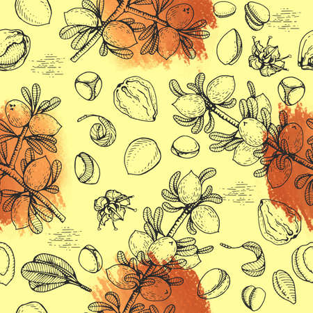 Seamless Pattern with branch argan tree with fruits, nuts argans, leaves, flower argans Detailed hand-drawn sketches, vector botanical illustration. For menu, label, packaging design. Stock fotó - 158495558