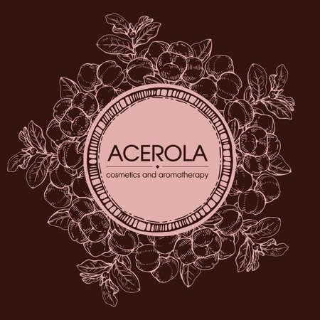 Frame with branch acerola cherry, fruit, flower. Detailed hand-drawn sketches, vector botanical illustration. For menu, label, packaging design.