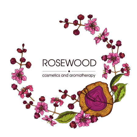 Frame with cut of a Rosewood and twigs with flowers and buds . Detailed hand-drawn sketches, vector botanical illustration.