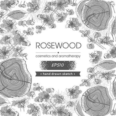 Frame with cut of a Rosewood and twigs with flowers and buds. Detailed hand-drawn sketches, vector botanical illustration. For menu, label, packaging design