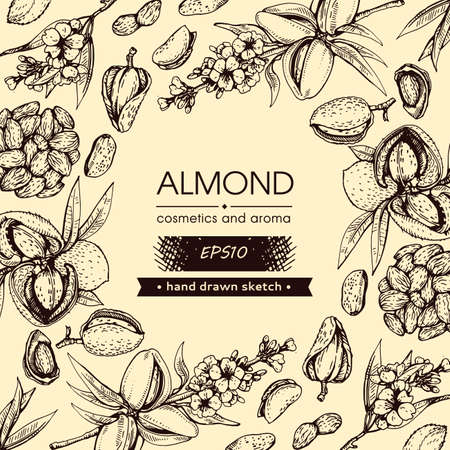 Background filled with Almond kernels of nuts and a branch of almonds with nuts, fruits, flowersand with empty circle inside. Detailed hand-drawn sketches, vector botanical illustration. Illusztráció