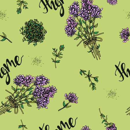 Seamless Pattern with twig of thyme with leaves and flowers. Detailed hand-drawn sketches, vector botanical illustration. Illusztráció