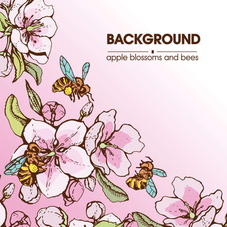 Collection of apple flowers. Detailed hand-drawn sketches, vector botanical illustration. For cosmetics, medicine, aromatherapy. For menu, label, packaging design.