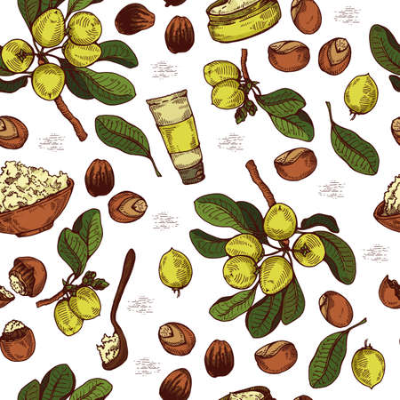 Seamless Pattern with branch Shea tree with fruits, nuts, leaves and Shea butter. Detailed hand-drawn sketches, vector botanical illustration. For cosmetics, medicine, aromatherapy. For menu, label, packaging design Illusztráció