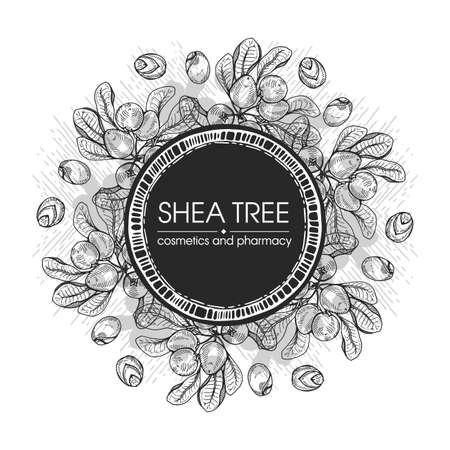 Frame with branch Shea tree with fruits, nuts, leaves and Shea butter. Detailed hand-drawn sketches, vector botanical illustration. For cosmetics, medicine, aromatherapy. For menu, label, packaging design.