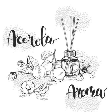 Still life with branch acerola cherry, fruit, flower and glass bottle with oil and accessories. Detailed hand-drawn sketches and lettering, vector botanical illustration. For menu, label, packaging design.