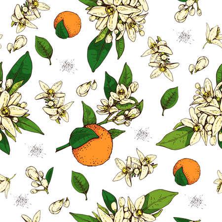 Seamless Pattern with bitter orange flowers, buds, fruits. Detailed hand-drawn sketches, vector botanical illustration. For menu, label, packaging design. Illusztráció