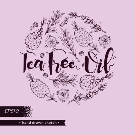Circle filled branches with leaves and flowers of tea tree. Detailed hand-drawn sketches, vector botanical illustration. For menu, label, packaging design.