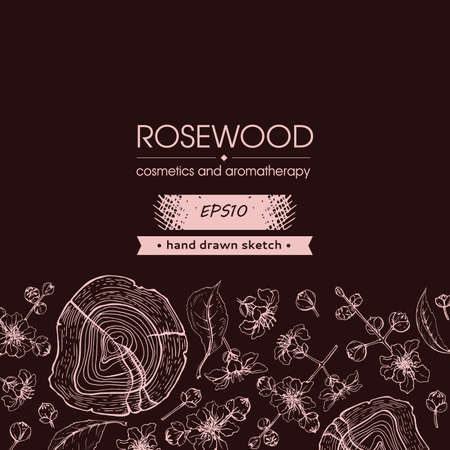 Background with cut of a Rosewood and twigs with flowers and buds. Detailed hand-drawn sketches, vector botanical illustration. For menu, label, packaging design Illusztráció
