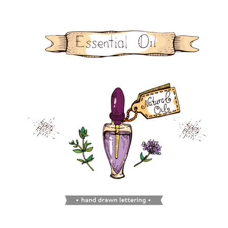Aromatherapy accessory. Detailed hand-drawn sketches, vector botanical illustration