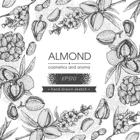 Background filled with Almond kernels of nuts and a branch of almonds with nuts, fruits, flowersand with empty circle inside. Detailed hand-drawn sketches, vector botanical illustration. Stock fotó - 162164156