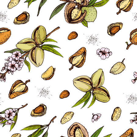 Seamless Pattern with Almond kernels of nuts and a branch of almonds with nuts, fruits, flowers. Detailed hand-drawn sketches, vector botanical illustration. Illusztráció