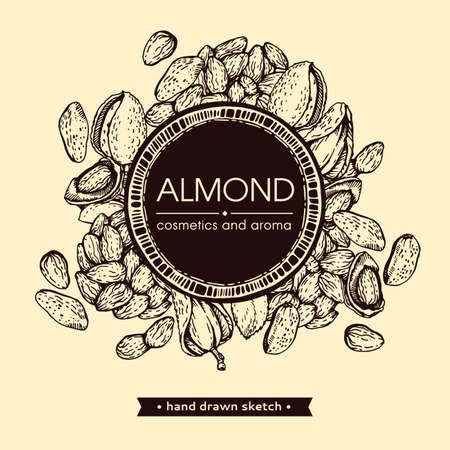 Frame with Almond kernels of nuts. Detailed hand-drawn sketches, vector botanical illustration. Illusztráció