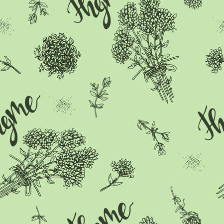Seamless Pattern with twig of thyme with leaves and flowers. Detailed hand-drawn sketches, vector botanical illustration. Stock fotó - 162167076