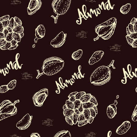 Seamless Pattern with Almond kernels of nuts. Detailed hand-drawn sketches, vector botanical illustration.