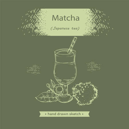 Hand-drawn sketch fresh matcha drink, vector illustration.