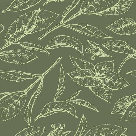 Hand-drawn seamless pattern matcha leaves on the green background, vector illustration.