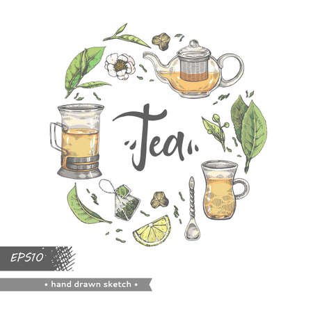 Hand-drawn sketch tea leaves and different tools, vector illustration.