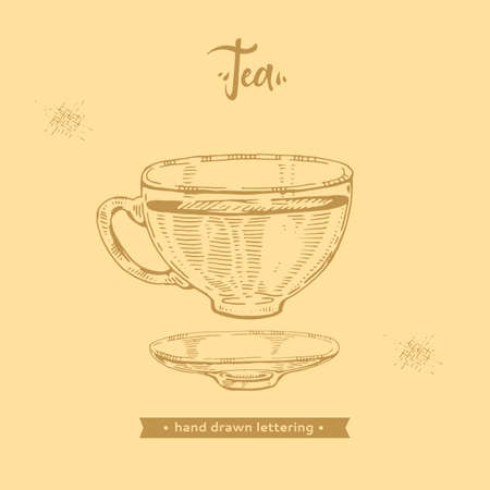 Hand-drawn lettering tea cup with the saucer, vector illustration.