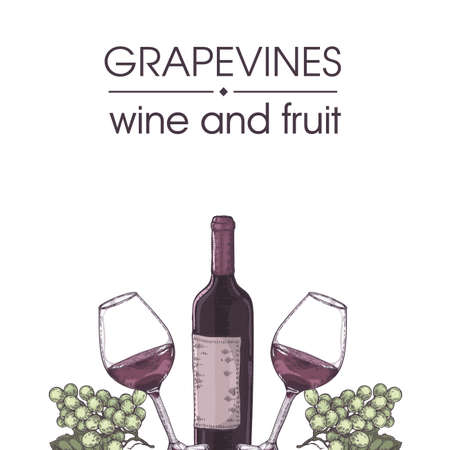 Collection of wine glasses, bottle and bunches of grapes. Detailed hand-drawn sketch, vector illustration.