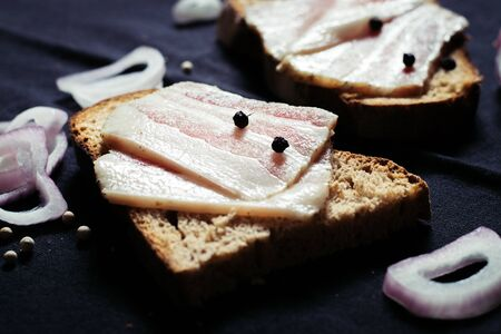 Lard with black bread and onions on a wooden board on a tablecloth 写真素材