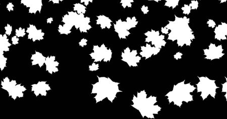 Falling Autumn leaves on black background for Thanksgiving Halloween party. 3D rendering