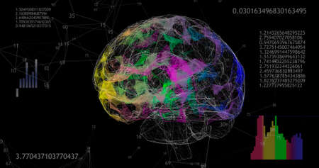 Rotating 360 low polygonal brain 3D model on black with animated numbers and diagrams.