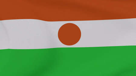 flag Niger patriotism national freedom , 3D illustration