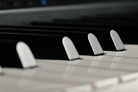 electronic piano: Electronic piano prepared for the concert. White and black keys ready to play sound.