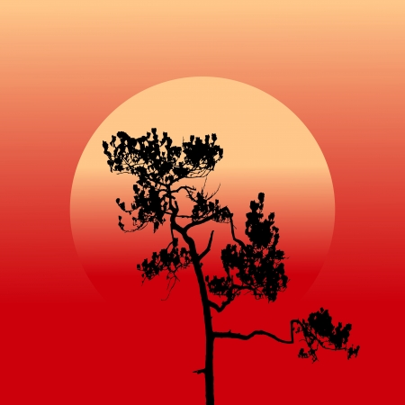 Sunset silhouette Vector