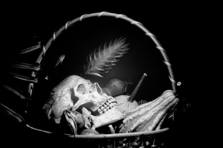 skull Black and White photo