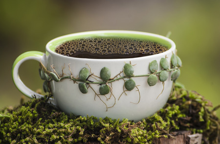 mocca: Coffee cup