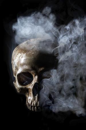 Still Life with a Skull photo