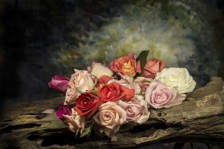 rose pattern: still life Photography with flower Stock Photo