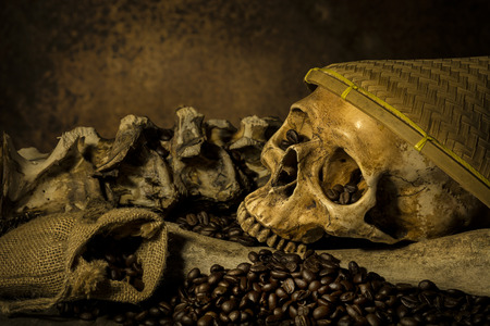 cadaver: Still life with coffee beans and skull Stock Photo