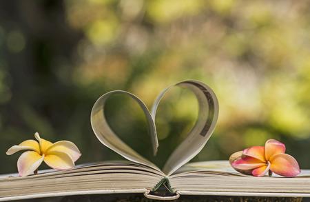 heart Books Stock Photo