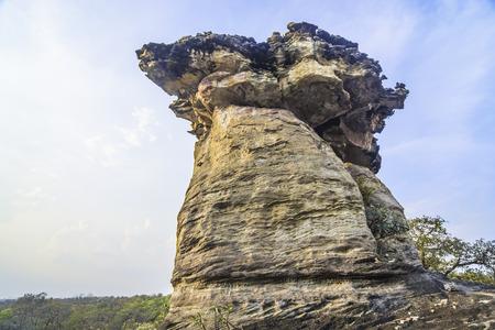 sandstone: sandstone pillars